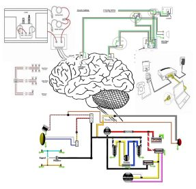 brain with electric diagrams