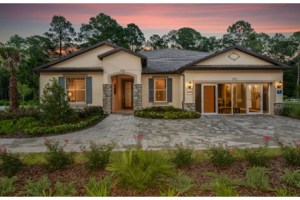 The Dockside At  Ventana Riverview Florida Real Estate   Riverview Realtor   New Homes for Sale   Riverview Florida