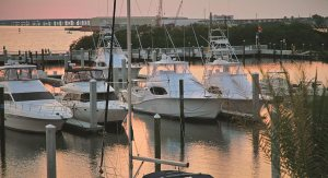 Westshore Yacht Club | South Tampa Florida Real Estate | South Tampa Realtor |  Condominiums for Sale | South Tampa Florida