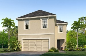 Read more about the article South Fork Lakes Riverview Florida Real Estate | Riverview Realtor | New Homes for Sale | Riverview Florida