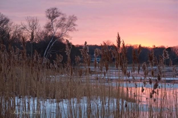 Niles Pond sunset
