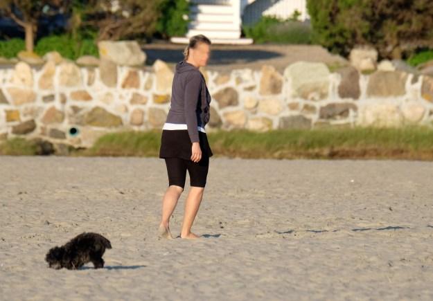 Good Harbor Beach No Dogs cooyright Kim Smith