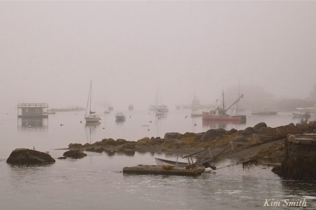 goose-cove-gloucester-foggy-evening-copyright-kim-smith