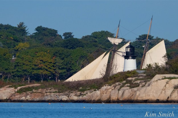 schooner-lynx-gloucester-ten-pound-island-copyright-kim-smith