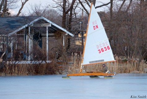 ice sailing niles pond january copyright kim smith