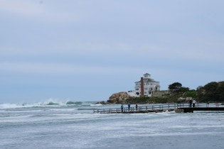 Hurricane Teddy Gloucester MA copyright Kim Smith - 4 of 31