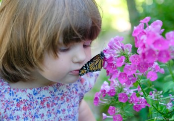 Butterfly Kisses Charlotte and Monarch copyright Kim Smith
