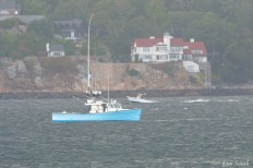Wicked Tuna BadFish Filming Gloucester Harbor copyright Kim Smith - 1 of 9
