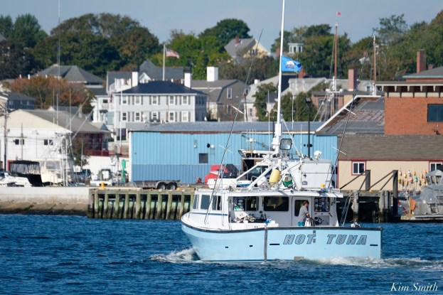 Wicked Tuna Filming Gloucester Harbor Hot Tuna copyright Kim Smith - 3 of 10