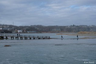 Good Harbor Beach Back Shore After Storm Gloucester Essex County Massachusettts copyright Kim - 3 of 27