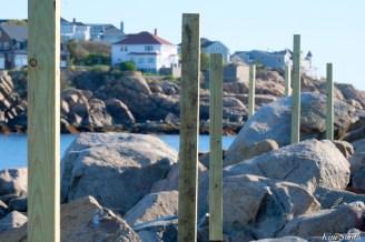 #savesaltisland Salt Island Gloucester MA copyright Kim Smith - 9 of 14