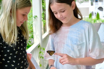 Butterfly girls copyright Kim Smith - 1 of 6