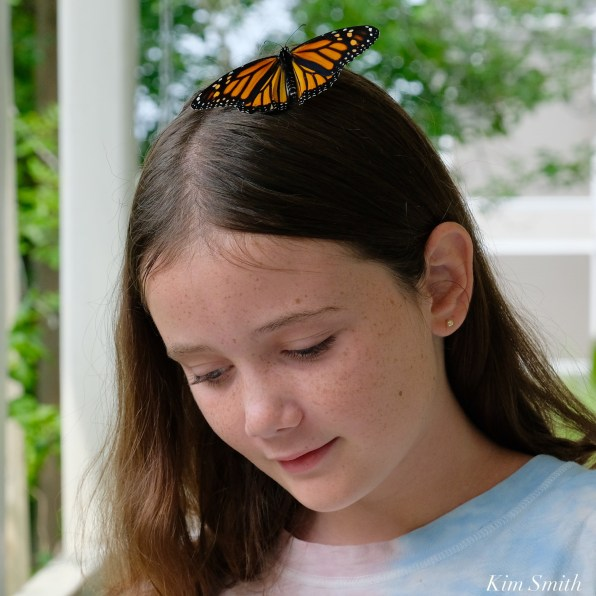 Butterfly girls copyright Kim Smith - 2 of 6