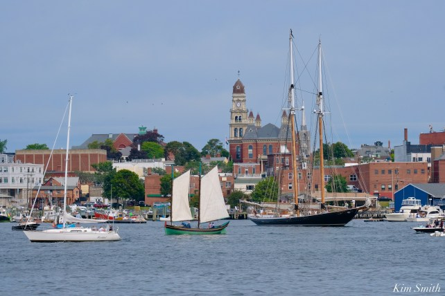 Schooner Parade of Sail Columbia Lewis H. Story Gloucester 2021 copyright kim Smith - 26 of 52