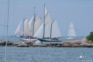 Schooner Parade of Sail Gloucester 2021 copyright kim Smith - 42 of 52