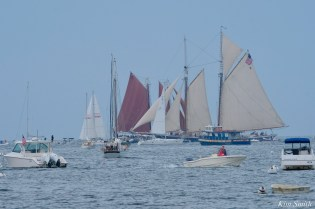Schooner Parade of Sail Gloucester 2021 copyright kim Smith - 50 of 52