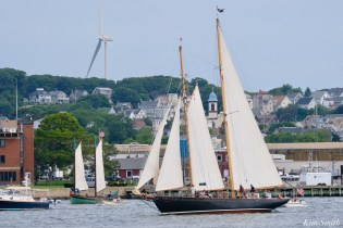 Schooner Parade of Sail When and If Gloucester 2021 copyright kim Smith - 3 of 6
