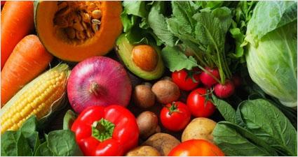 야채 식이섬유 천천히 먹는 슬로우 칼로리 프로젝트와 영양소 섭취기준