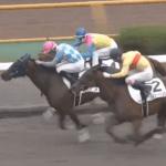 木村牧場生産馬ヤマメ、函館にて新馬戦を快勝!