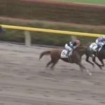 木村牧場育成馬グーガルドリームズ、1番人気に応えて勝ち上がり!