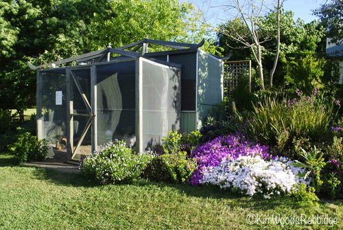 A north-facing chook boudoir is softened with mounds of lilac and white pig face.