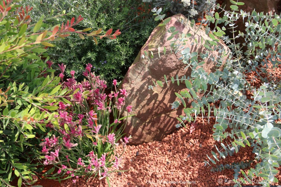 Man-made 'rocks' and red gravel sourced from Wales are the perfect foil for delicate plantings.