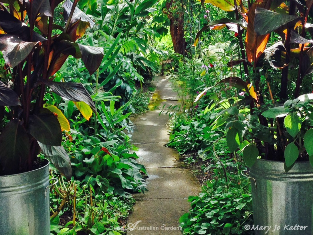 Canna-filled bins and meandering paths.