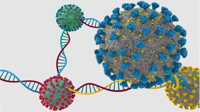 yakin dogu universitesi uluslararasi sars cov genom analizi webinari duzenledi
