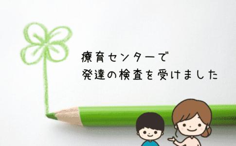 発達の検査 田中ビネー知能検査 療育