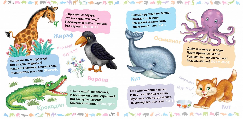 Детские загадки про природу - 1