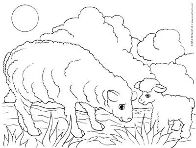 Sheep And Lamb Free Farm Animals Coloring Pages To Print And Color Online Colouring Book Printable Pages From Kinderart And Kindercolor