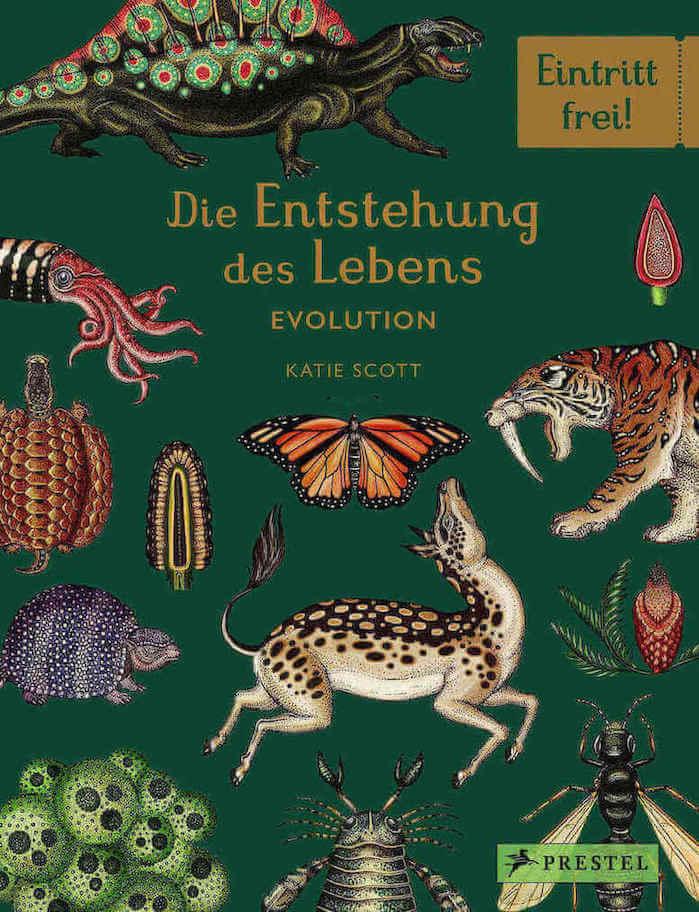 Buch für Kinder, Jugendliche und Erwachsene über die Evolution