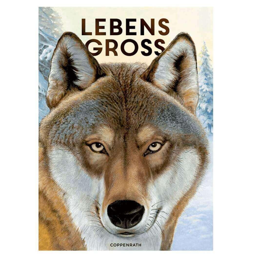 Bilderbuch vom Coppenrath Verlag - Die Tiere des Waldes lebensgroß