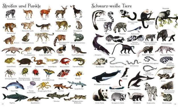 Schwarz weiße Tiere