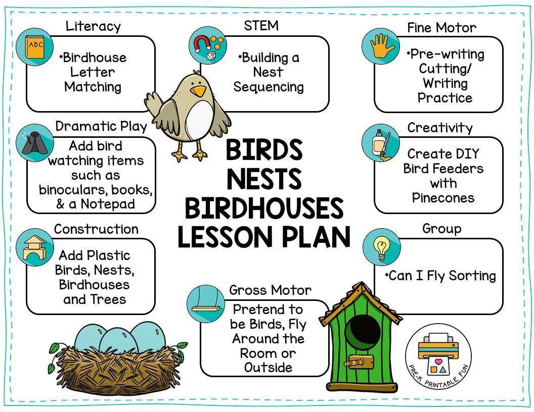 Voorschoolse Werkbladen Vogels 4