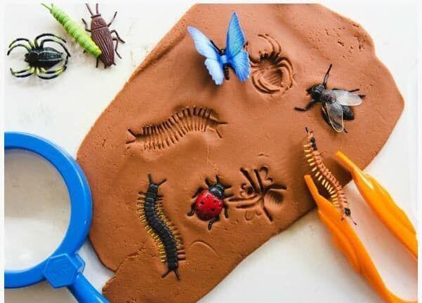 Voorschoolse Werkbladen Over Insecten 7