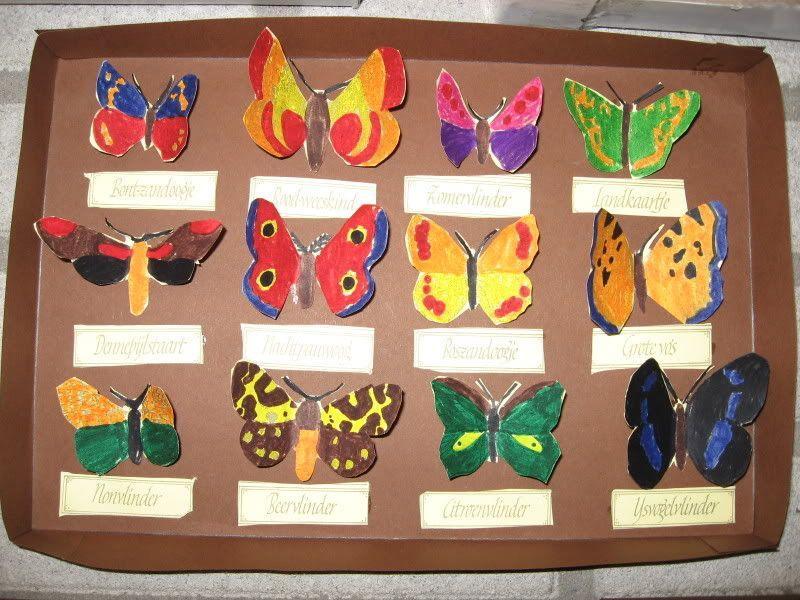 Voorschoolse Werkbladen Over Insecten 8