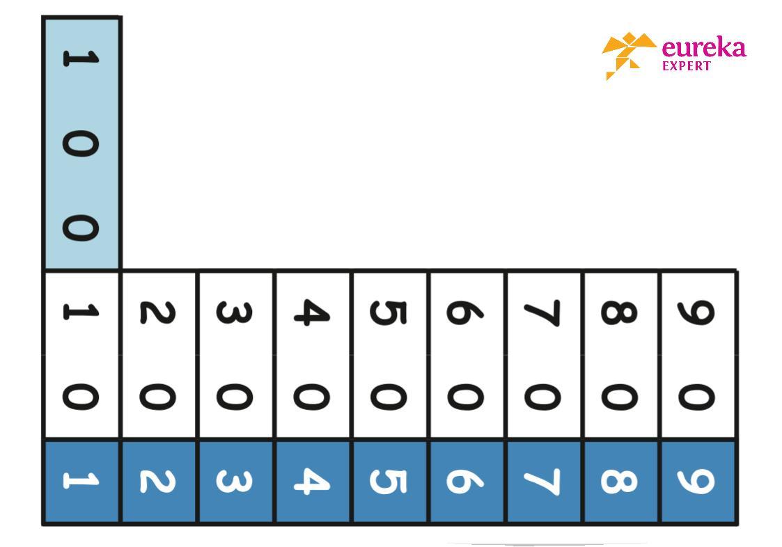Wiskunde Werkbladen Tijd 7