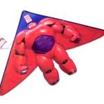 BH6_Flying Kite