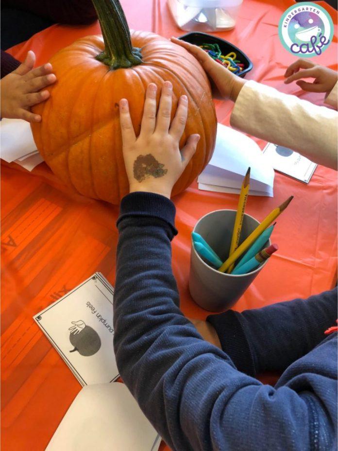 pumpkin unit for kindergarten