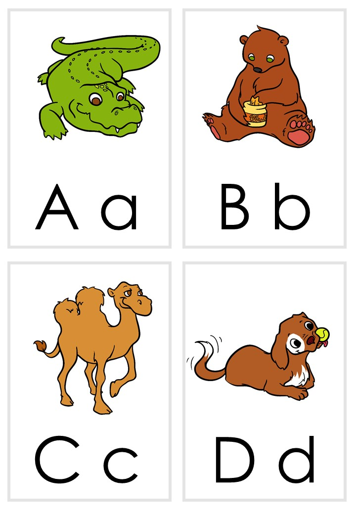 picture relating to Printable Alphabet Flash Cards called Printable Alphabet Flash Playing cards Cost-free