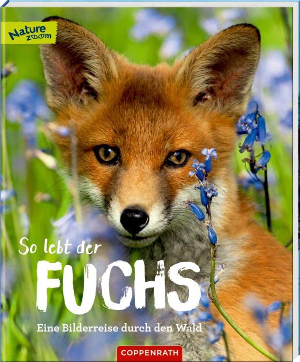 Sandra Noa: So lebt der Fuchs. Eine Bilderreise durch den Wald
