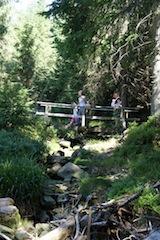 Mehr Wald wagen. Astrid Schulte will die KInder zum Schnitzen und spielen in der Natur bewegen.  Foto (c) kinderoutdoor.de