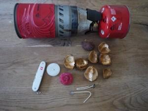 Kastanienschalen und ein wenig Zubehör. Daraus basteln wir unsere Teelichter. Foto (c) kinderoutdoor.de