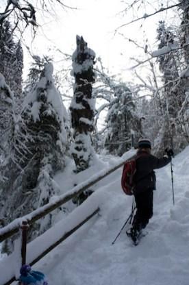 Winterwandern mit Kindern im Eistobel. Diese Schlucht im Allgäu macht ihren Namen alle Ehre.(c) kinderoutdoor.de