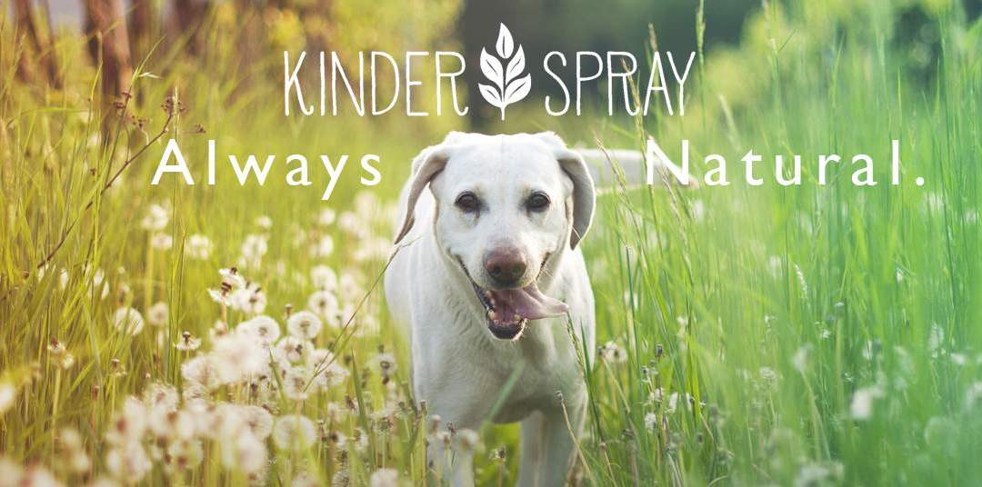 Kinder Spray – Your Natural Ally Among Top-Rated Pest Control Companies