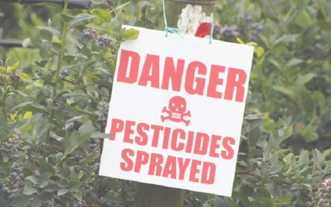 Pesticides and Health: What You Need to Know to Protect your Home and Family