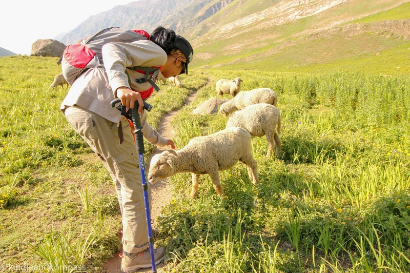 finding time to do what you love, kasmir hikes