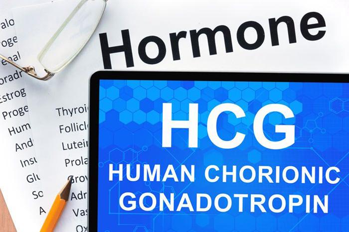 HCG or Human Chorionic Gonadotropin