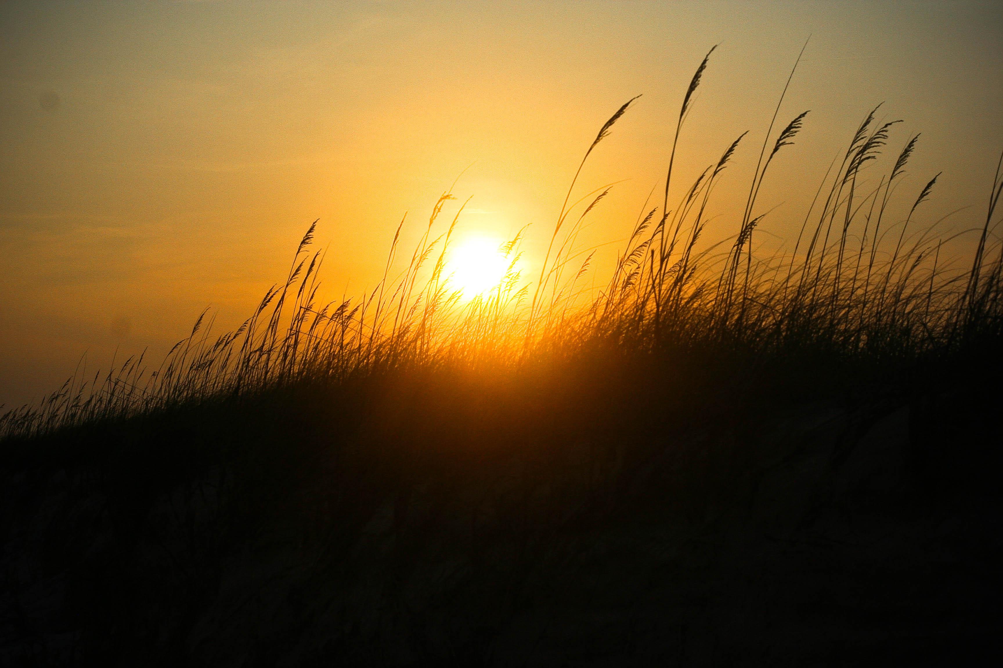 sunset beauty3